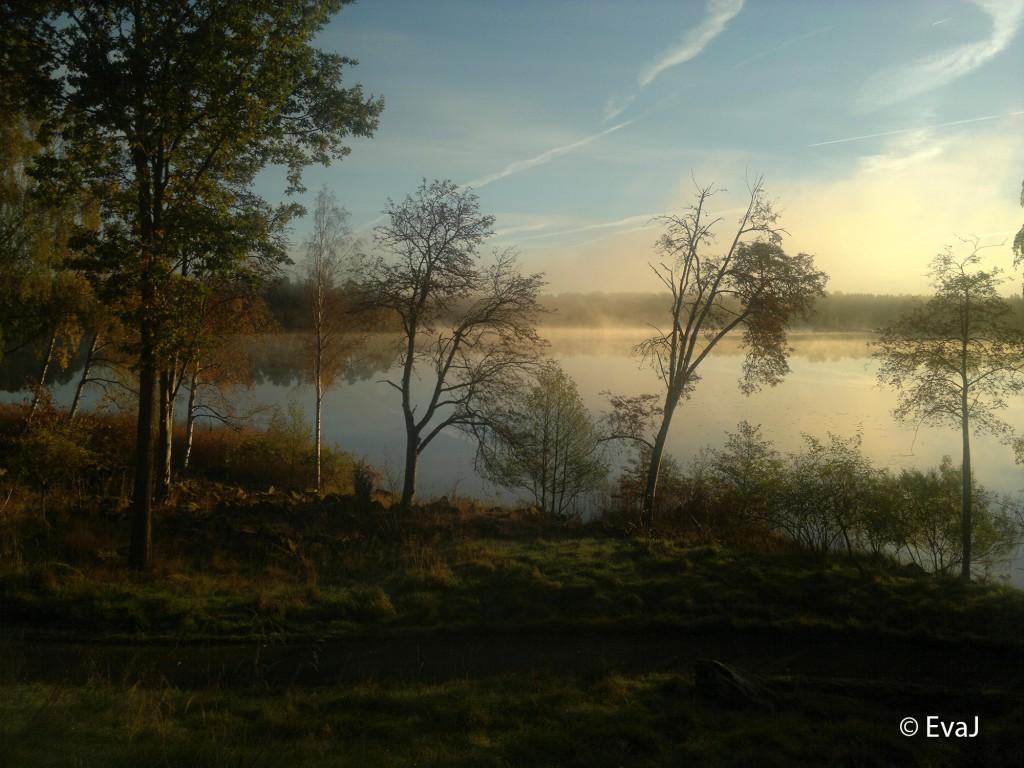 Fingals Minne - Dis över sjö